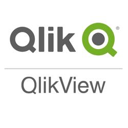 Licenses QlikView